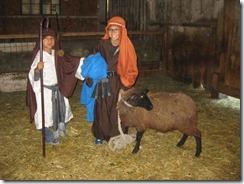 Shepherds 2014-11-16 004 - Copy